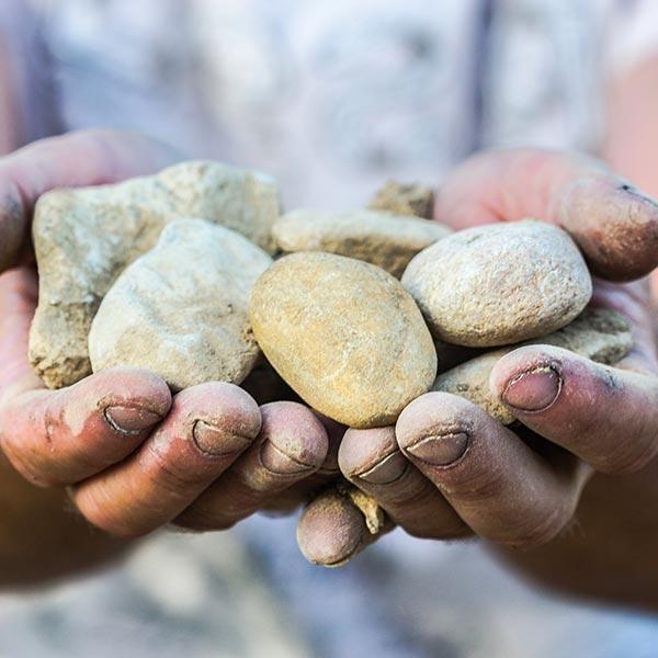 Mains du vigneron du Domaine Au 7ème Clos, présentant un tas de pierres.